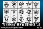 Tribal Brushes 3 PS 6+