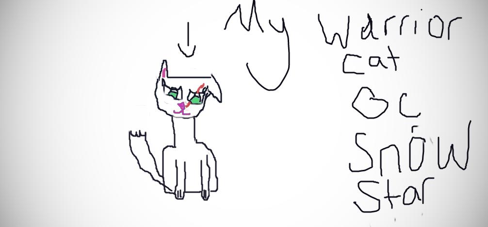 warrior cat oc by snowstarofhollyclan