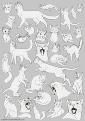 Free Art: Cats Cats Cats! by creanima