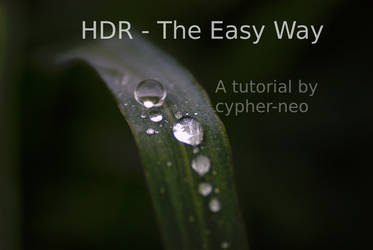 HDR - The Easy Way by exarobibliologist