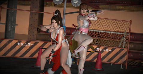 Pose - Kasumi and Mai in 'Flame and Blossom'