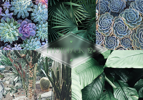 Photopack 012# - Plants by Efruse