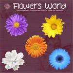 Flowers World