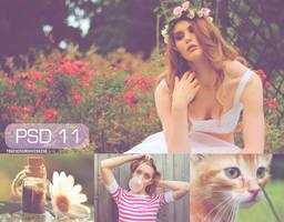 PSD 11 by touchingandkissing