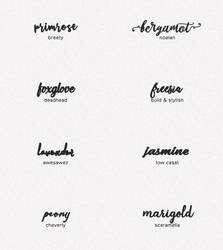 font pack #11 by wildfireresources by wildfireresources