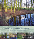 Forest Pond stock pack