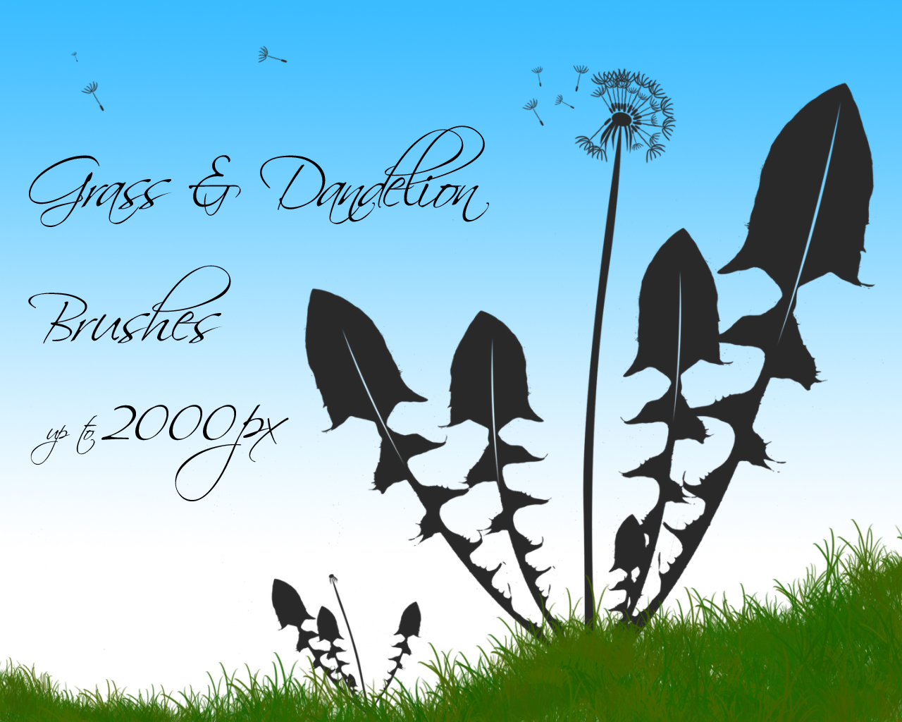 Grass and Dandelion Brushes