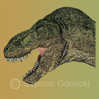 T.rex head. by Szymoonio