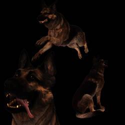 [MMD] Fallout 4 Dogmeat
