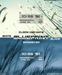 Blueprint-v1.0_en