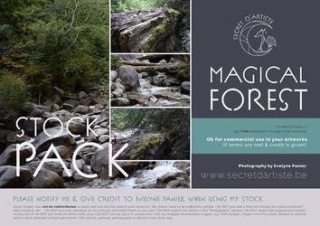 92. Enchanted forest by secretdartiste-stock