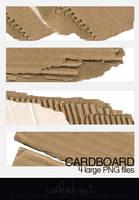 Cardboard-1 by oridzuru
