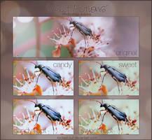 Photoshop Actions 11 by oridzuru