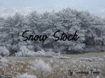 Snow Stock