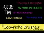 Copyright Brushes