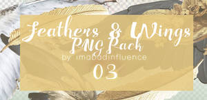 Feathers and Wings PNG Pack by imabadinfluence