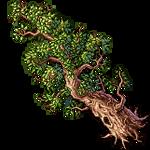Dryad's Tree