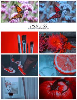 PSD n.55