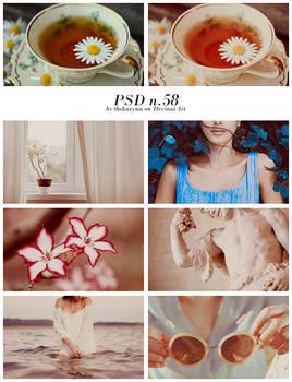 PSD n.58