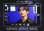 Photopack #376 - MinHo [Stray Kids]