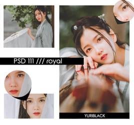 PSD #111 - Royal by YuriBlack
