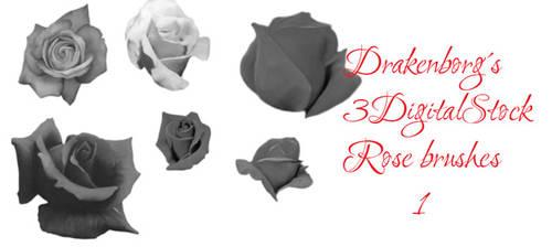 Rose brush pack 1
