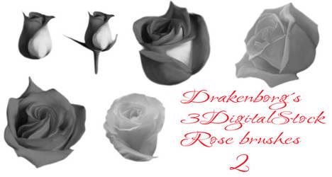 Rose brush pack 2