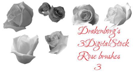 Rose brush pack 3