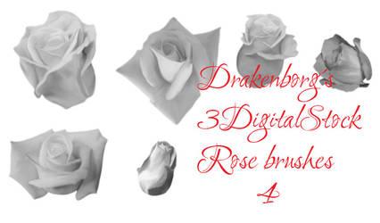 Rose brush pack 4