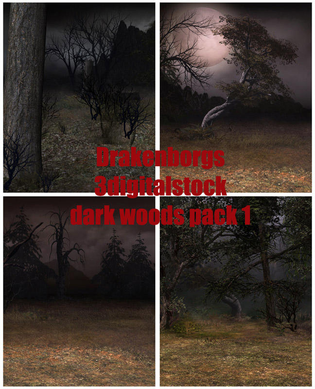 Dark woods 1 by 3DigitalStock