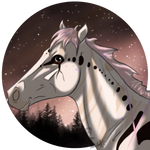Stargazing YHH :: Kianise