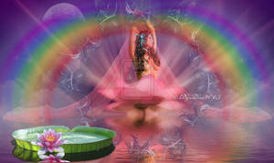 Pink lotus and the Rainbow