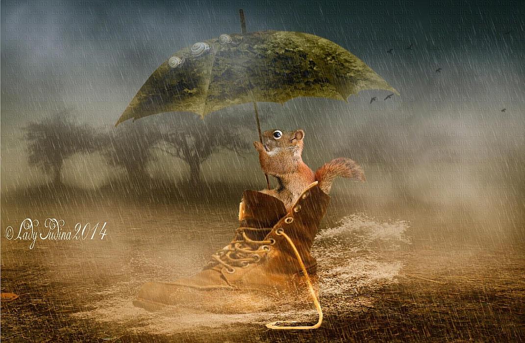 Rain-Eso by ladyjudina