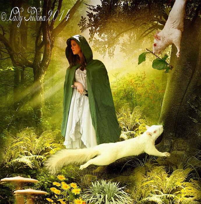 Forest dwellers-Erdolakok 8 by ladyjudina