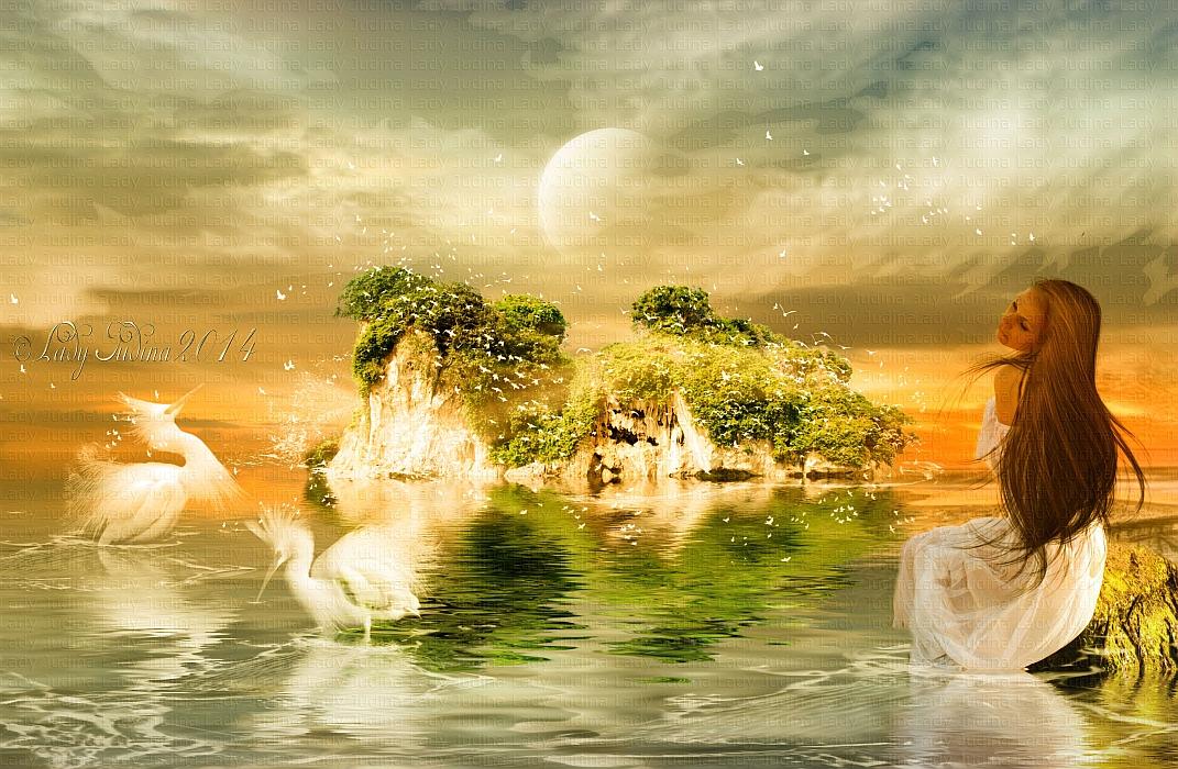 Birds Island-Madarak szigete