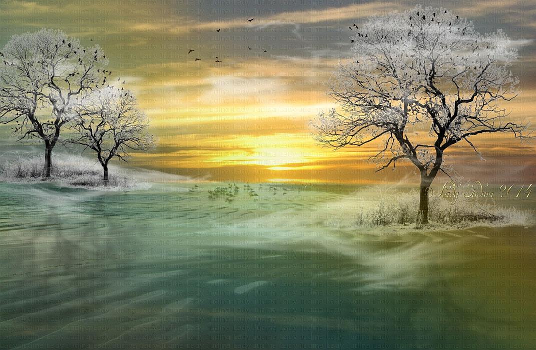 November Frost by ladyjudina