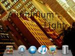 Aluminium Light for XWD 2.0