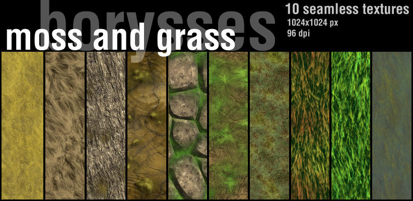 Moss and grass by borysses