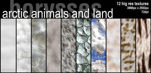 Arctic textures