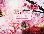 PSD #10 Pink and White
