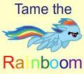 RainbowFlyer