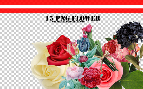 Flower PNG by Cornelie20