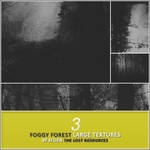 3 Foggy Forest Textures - TLR