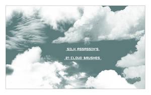 SilkAssassins Cloud Brushes by SilkAssassin