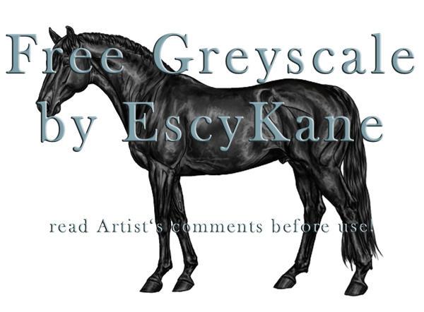 FREE Greyscale WB Stallion by EscyKane