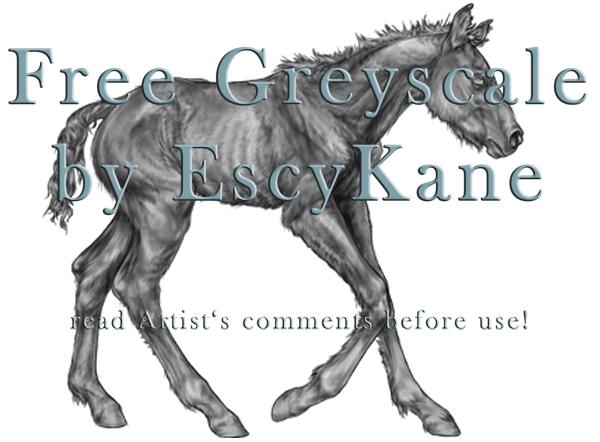 Free Greyscale foal by EscyKane