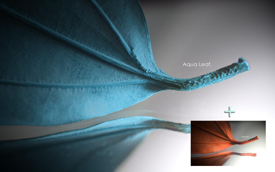 -Aqua Leaf+Genesis- by Hemingway81