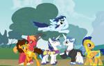 The Stallion 6