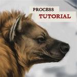 Hyena Process Tutorial