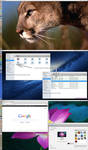 Mac OS X Lion Skin Pack V3 For Ubuntu 12.10